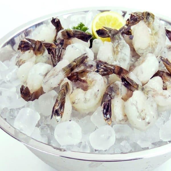 SMS Choice Shrimp