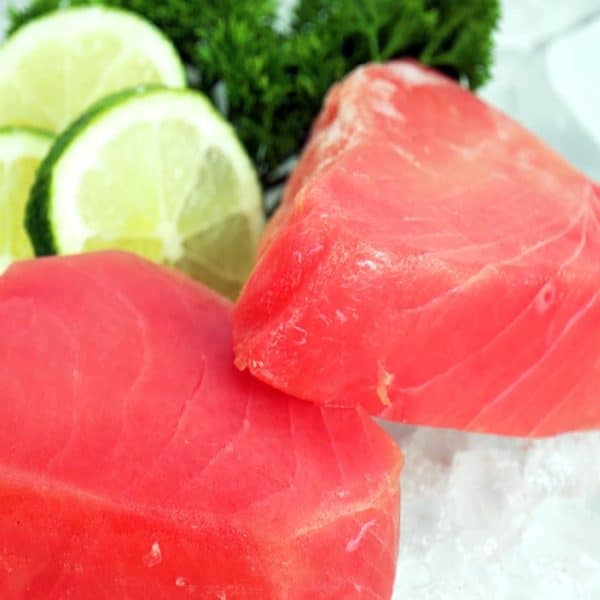 The Classic Catch Yellowfin Tuna refreshed